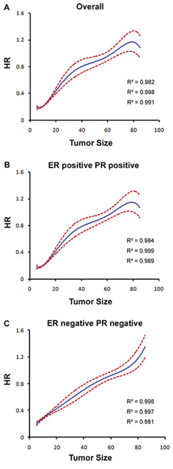 Estimates of hazard ratios (HRs) of breast cancer-specific mortality based on tumor size for different ER/PR status groups using quantic polynomial regression.