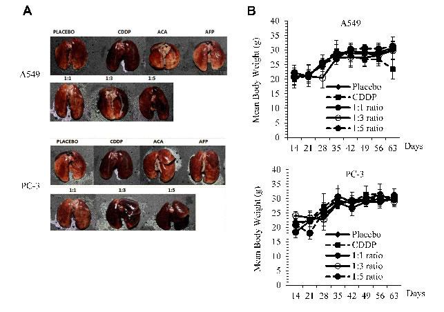 Physiological side effects of rhAFP/ACA