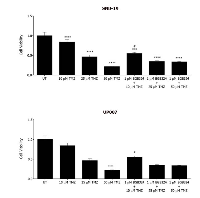 Effect of BGB324 on GBM cell growth in combination with Temozolomide (TMZ).