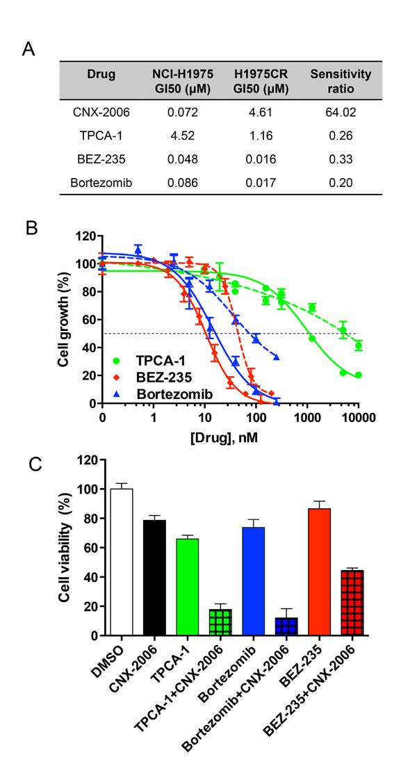 Targeting NF-κB pathway.