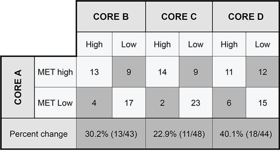 Metmab status discordance among different tumor cores.