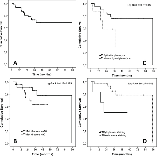 Exploratory survival analyses in the TMA cohort.