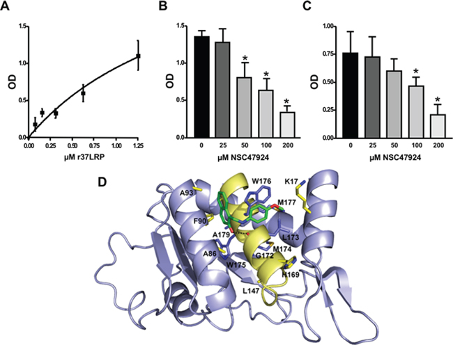 Structural basis of 67LR inhibition by NSC47924.