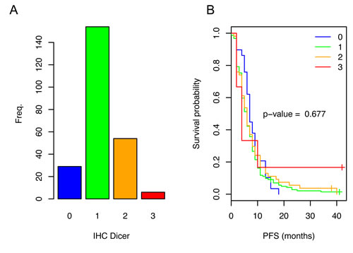 Dicer expression in the primary tumors of patients with mCRC and the related PFS.