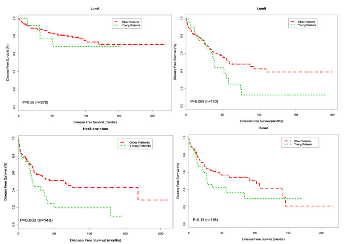 Kaplan-Meier DFS Curves for Young and Older Patients by Subtype.