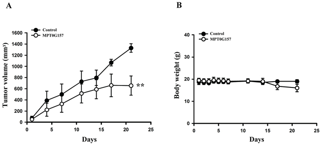 The effect of MPT0G157 in HCT116 xenograft model.
