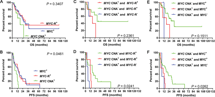 Overall survival and progression-free survival in cases grouped according to MYC CNA, MYC gene rearrangement and MYC expression 3A–3B.