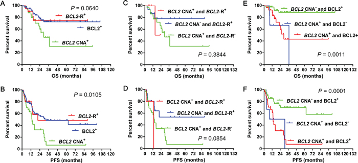 Overall survival and progression-free survival in cases grouped according to BCL2 CNA, BCL2 gene rearrangement and BCL2 expression 4A–4B.