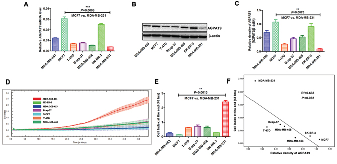 Association between AGPAT9 expression and tumor invasion.
