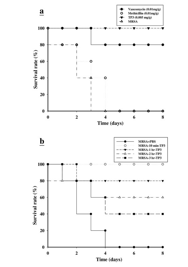Effects of tilapia piscidin 3 (TP3) treatment on mice infected with MRSA.