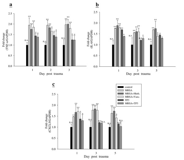 TP3 modulates gene expression profiles in mice.