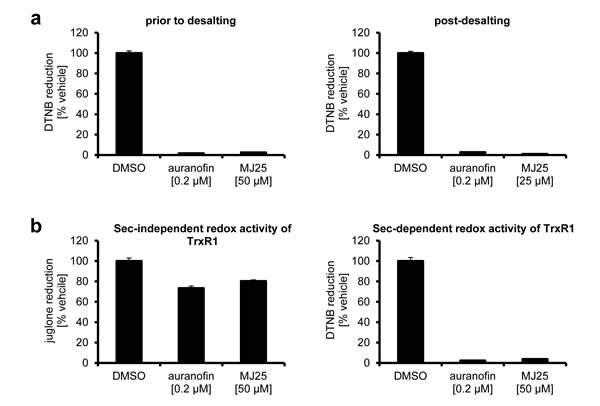 Inhibition of TrxR1 by MJ25 and auranofin is irreversible and likely occurs at its Sec-dependent active site.