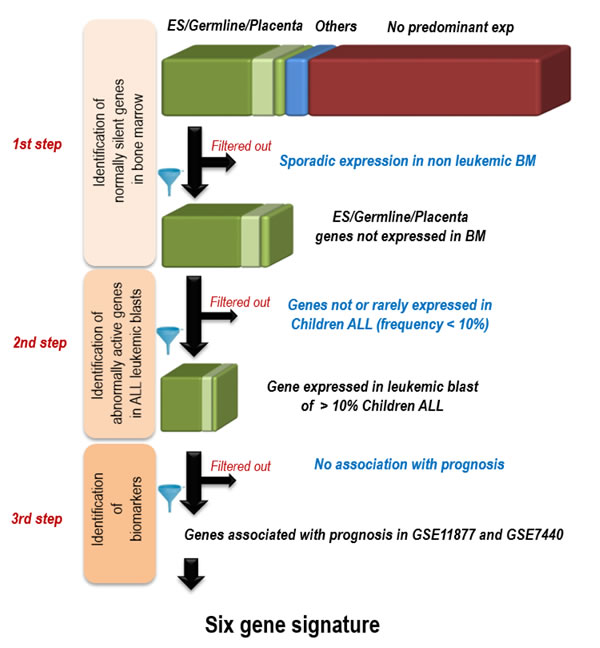 Strategy for the identification of 6 genes whose activation in pediatric ALL bone marrow is associated with prognostic.