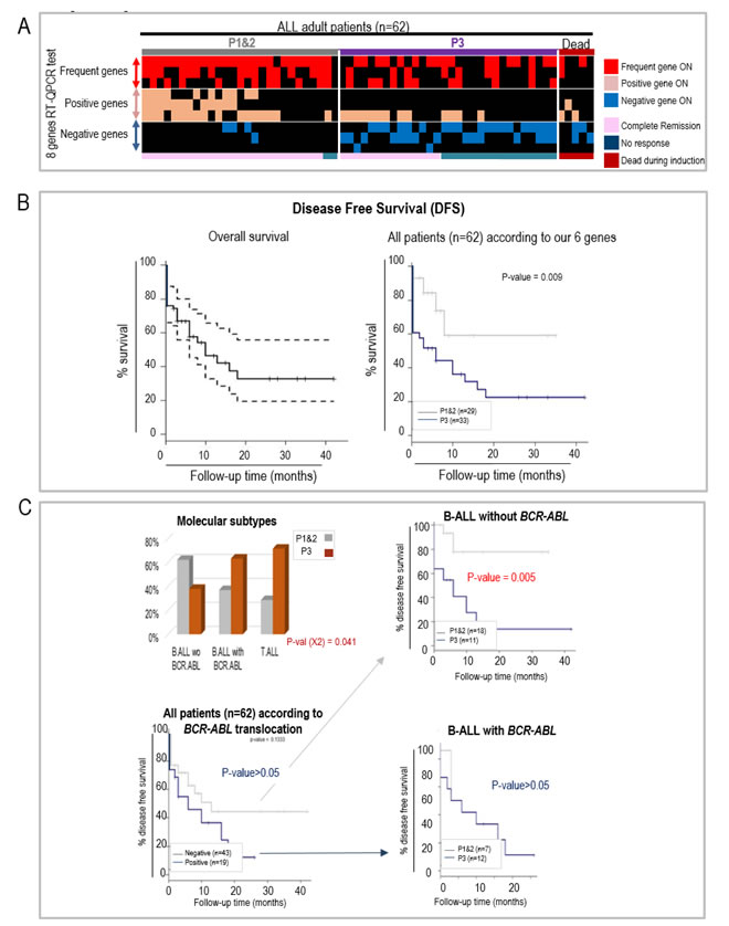 RT-qCPR detection of the aberrant expression of 6 genes helps predicting the response to an induction protocol and disease free survival (DFS) in a prospective study of Chinese adult ALL patients.