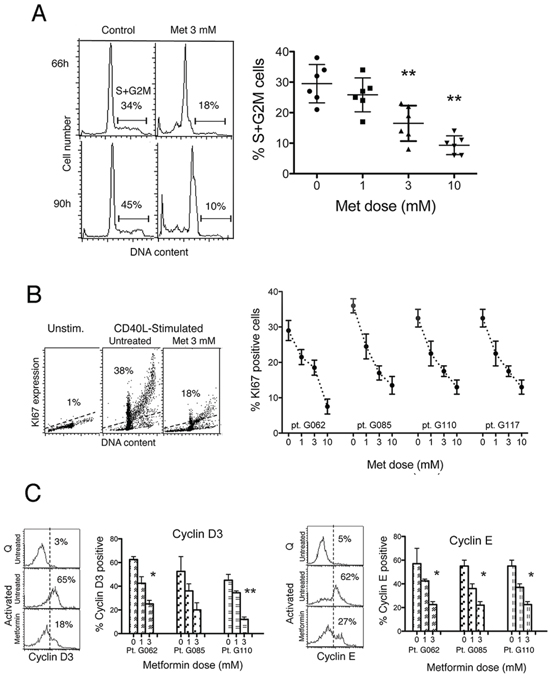 Metformin impairs cell cycle entry of CLL cells.