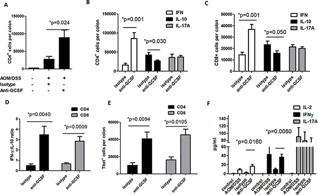 G-CSF neutralizing antibody changes T cell responses in AOM/DSS treated mice.