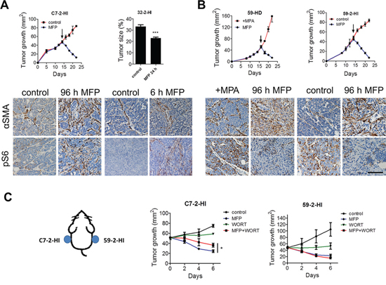 Tumor level of PI3K/Akt pathway determines the extent of stromal reaction in response to therapy.