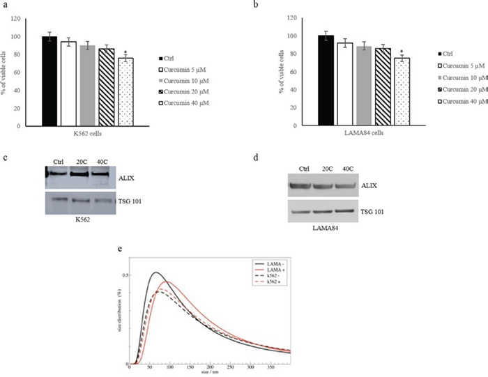 K562 a. and LAMA84 b. cell viability was measured by MTT assay after 24 h of treatment with Curcumin (5–10-20–40 μM).