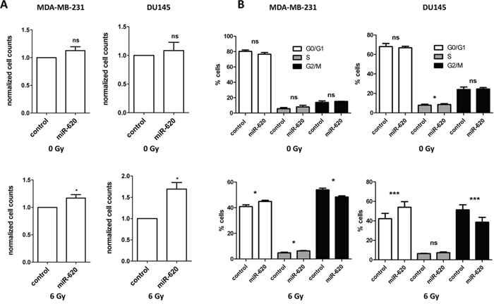 miR-620 increases cellular proliferation and decreases G2/M phase accumulation following irradiation.