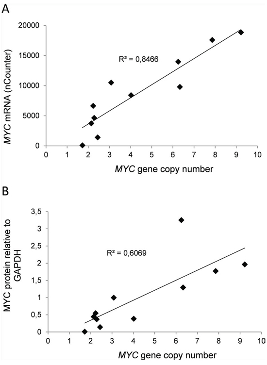 Expression of MYC in myeloma cell lines correlated positively with sensitivity to MYC inhibition.