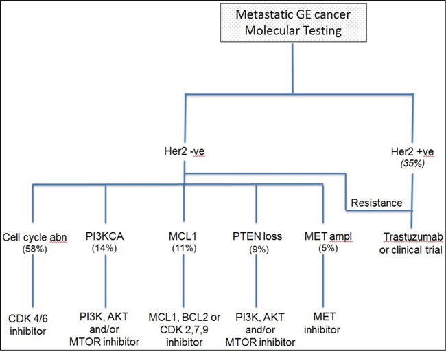 Proposed algorithm showing the use of molecular testing in clinical practice as a platform to direct patients towards relevant clinical trials.