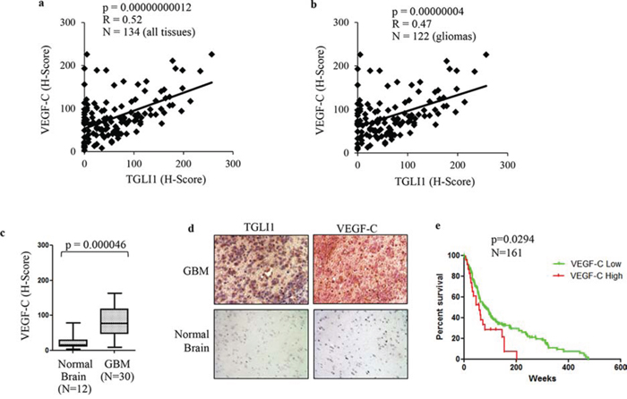 High TGLI1 levels are associated with increased VEGF-C expression in patient gliomas.