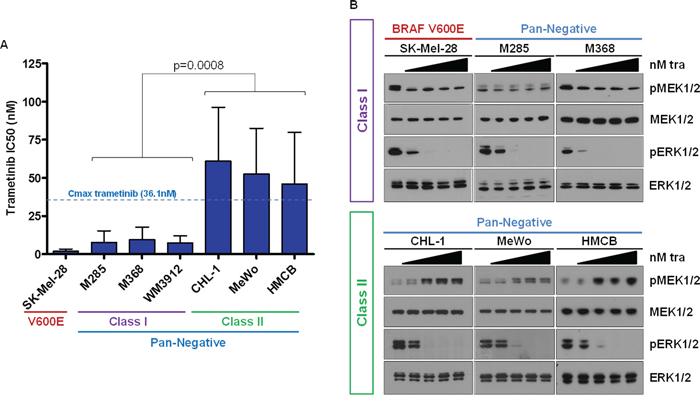 Pan-Negative Melanomas Display Differential Sensitivity to MEK1/2 Inhibition.