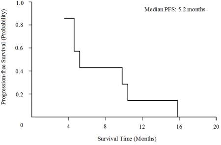 Kaplan-Meier curves for progression-free survival (PFS).