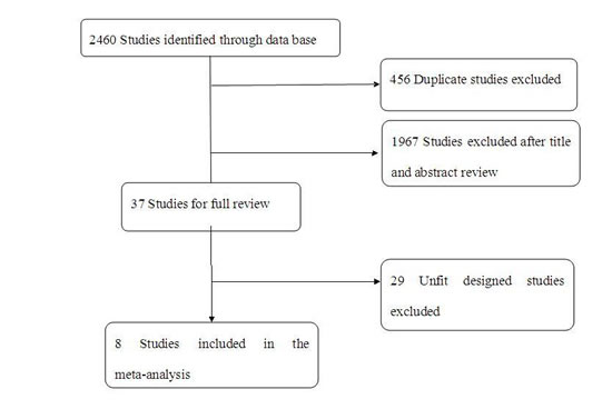 A flow chart on selection included of trials in the Meta-analysis.