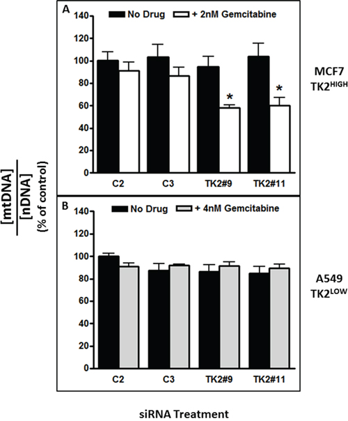 The combination of TK2 siRNA and gemcitabine decreased mitochondrial DNA content in TK2HIGH(MCF7) cells but not in TK2LOW(A549) cells.