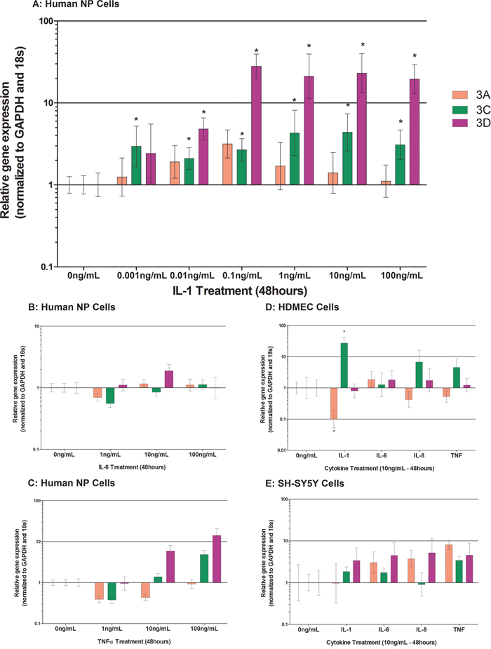 Cytokine regulation of Class 3 Semaphorins in human NP cells treated with IL-1β A. IL-6 B. and TNFα C. HDMECs D. and SH-SY5Y E. cells were treated with 10 ng/mL of IL-1β, IL-6, IL-8 or TNFα.