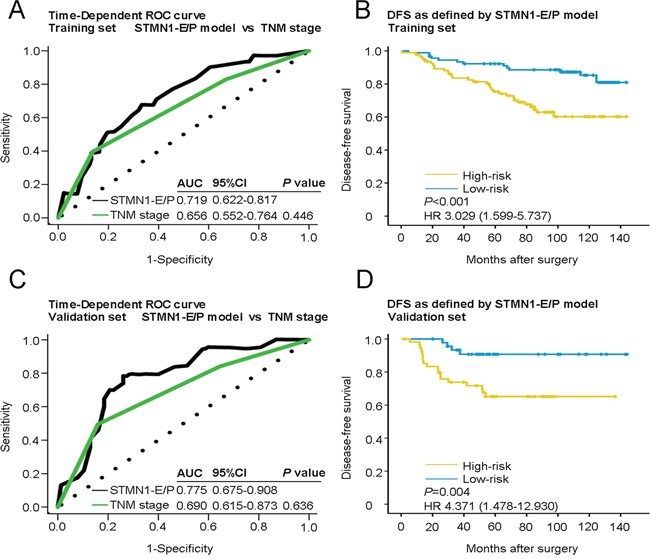 Time-dependent ROC curves for the prognosis of breast cancer by the STMN1-E/P model and Kaplan-Meier survivals in the training and validation sets.