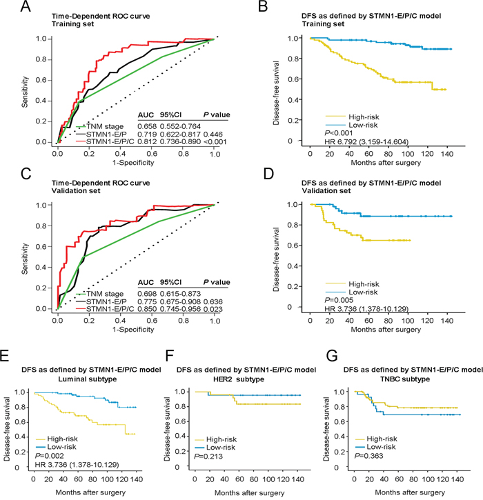 Time-dependent ROC curves for prognosis of breast cancer by the STMN1-E/P/C model and Kaplan-Meier survivals in patients of two sets and different subtypes of breast cancer with high- or low-risk according to the STMN1-E/P/C model.