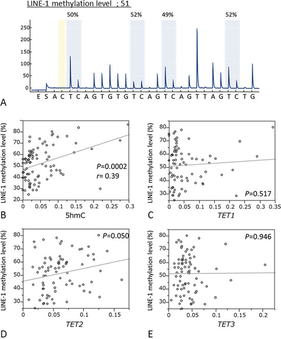 Correlation between the LINE-1 methylation levels and 5-hmC expression or mRNA levels of TETs family.
