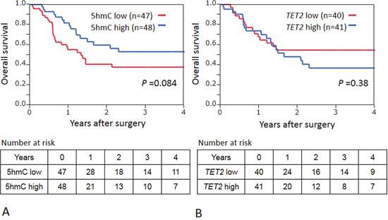 A. Kaplan–Meier curves for overall survival according to 5 hmC status in ESCCs.