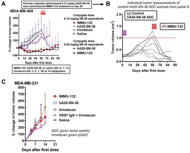 Therapeutic efficacy of IMMU-132 in TNBC xenograft models.