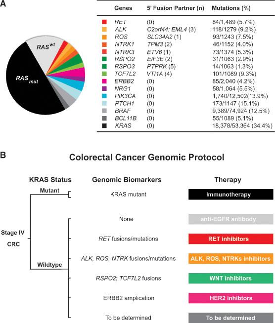 Colorectal cancer classification based on genomic biomarkers.