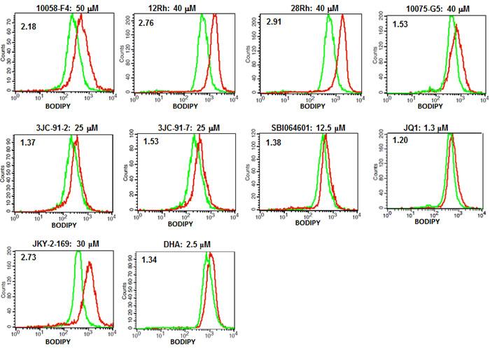 Myc inhibitors promote accumulation of neutral lipids.