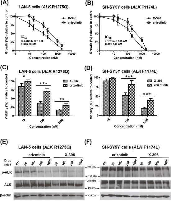 X-396 and crizotinib decrease the growth, viability and ALK-phosphorylation of LAN-5 and SH-SY5Y Neuroblastoma cell lines in vitro.