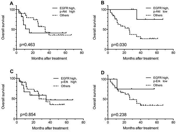 Kaplan-Meier curves for comparisons between EGFR high patients with certain p-Akt or p-Erk expression status and the rest of the patients.
