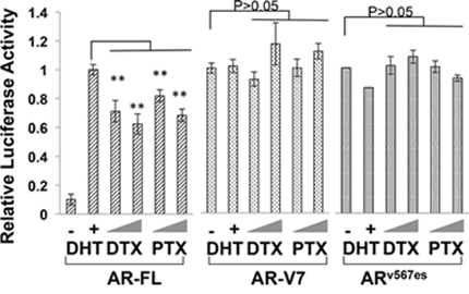 Transcriptional activities of constitutively active AR-Vs are refractory to taxane treatment.