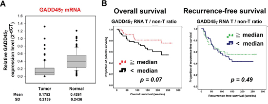 Low GADD45γ expression in HCC tumors predicted poor survival in patients with HCC who had undergone curative surgery.