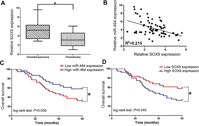 Clinical significance of miR-494 and SOX9 in chondrosarcoma.