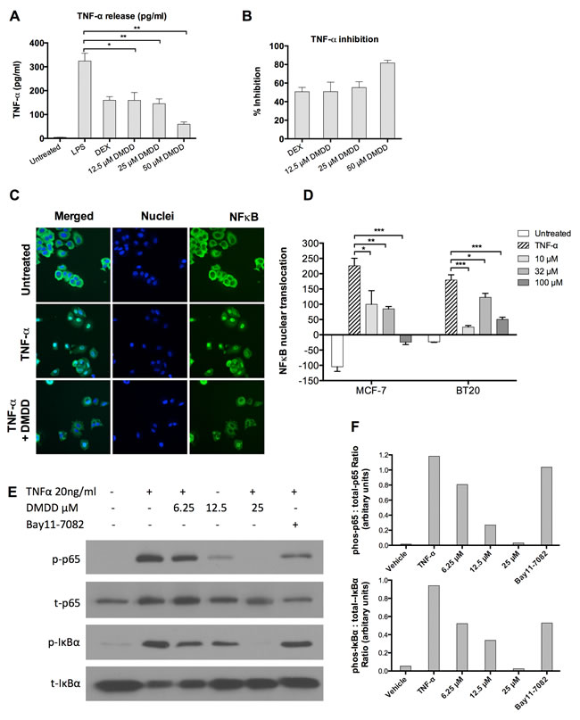 DMDD inhibits LPS-induced TNF-α production and suppresses the canonical NF-κB signaling pathway.
