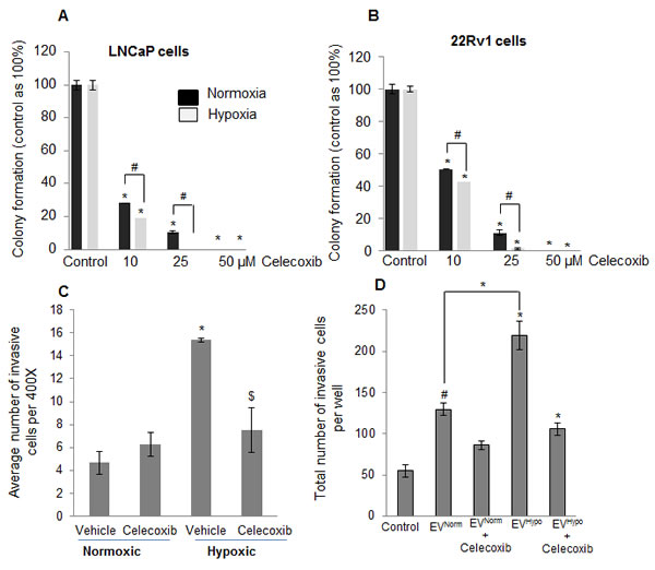Increased sensitivity of hypoxia-exposed PCA cells towards celecoxib following reoxygenation.