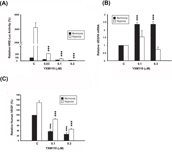 YXM110 inhibits HRE-Luciferases activity and VEGF transcription and translation.