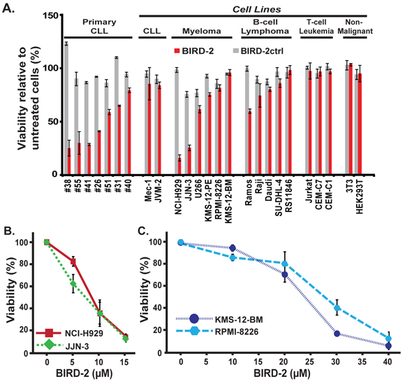 Differential sensitivity of various malignant and non-malignant cell lines to BIRD-2-induced cell death.