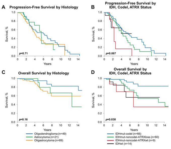Progression-free and overall survival by diagnosis and molecular subgroups.