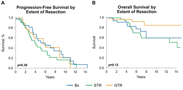 Progression-free and overall survival by extent of resection.