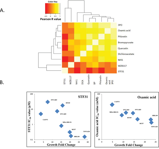 A. Correlation heat-map demonstrating that seven glycolytic inhibitors had IC50 concentrations that correlated with each other in the panel of cell lines.